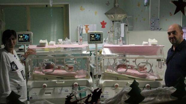 Mario Filotei e Nicoletta Topa con le loro bimbe nell'incubatrice (foto La Bolognese)