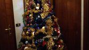 L'albero di Natale di Alessandro Alessandrini