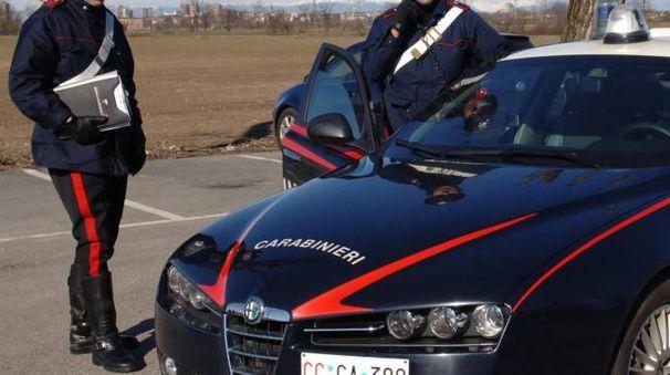 Carabinieri in azione (Newpress)