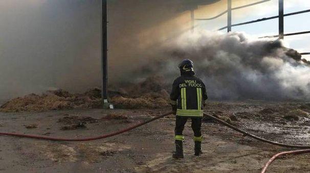 Incendio a Bornasco (Torres)