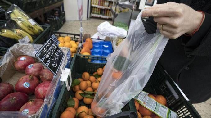 Sacchetti biodegradabili a pagamento, è rivolta sui social (Ansa)