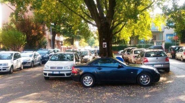 Le vetture parcheggiate intorno alla aiuola di via Purocelo lasciano poco spazio al passaggio di altri mezzi, soprattutto se di soccorso