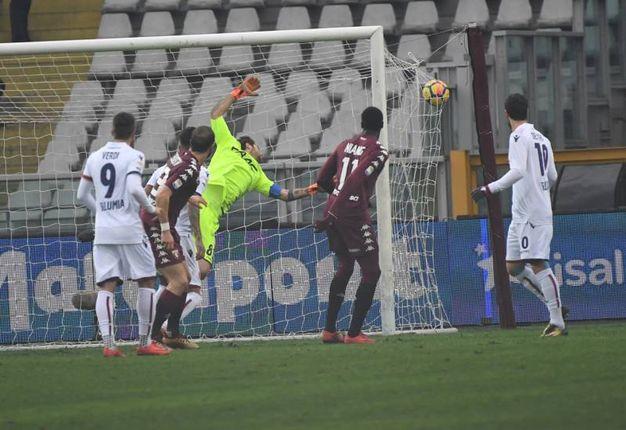 Il gol dell'1-0 del Torino, firmato De Silvestri (foto Schicchi)