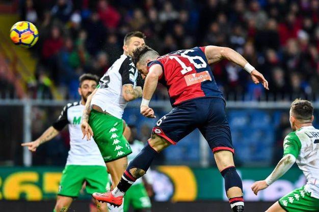Genoa-Sassuolo 1-0, Galabinov (Ansa)