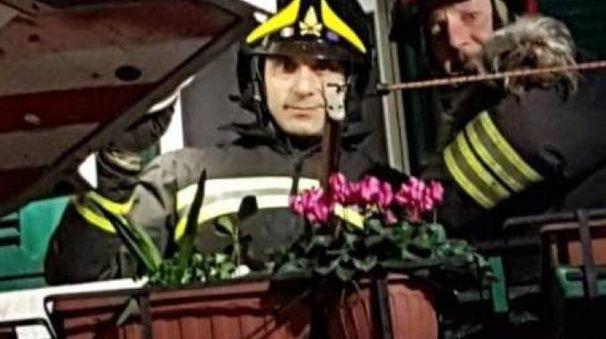L'animale salvato dai vigili del fuoco
