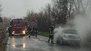 Forse un corto circuito all'origine dell'incendio (foto Zeppilli)