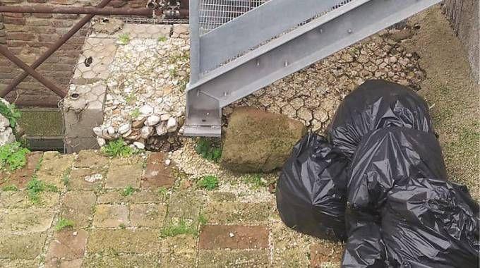 Alcuni dei sacchi dell'immondizia