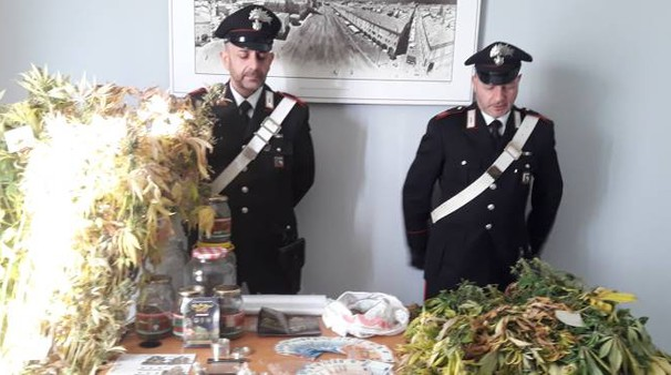 I carabinieri mostrano la marijuana sequestrata