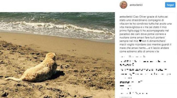 Il post di Antonella Clerici (Instagram)
