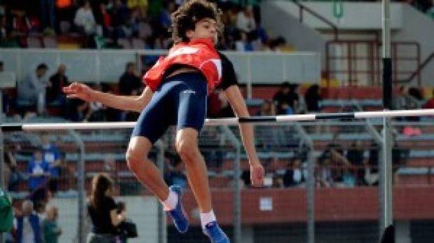 Ceccarelli in azione
