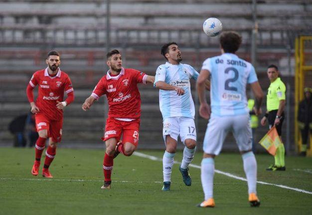 Un incontro con la Segre a Pesaro (fotoPrint)