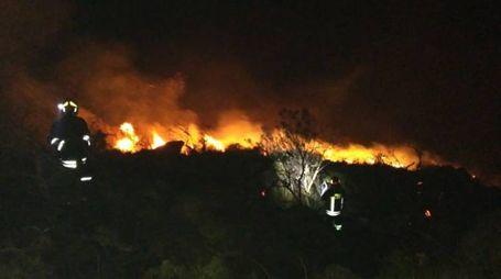 Lotta contro le fiamme all'Isola del Giglio (foto: vigili del fuoco)