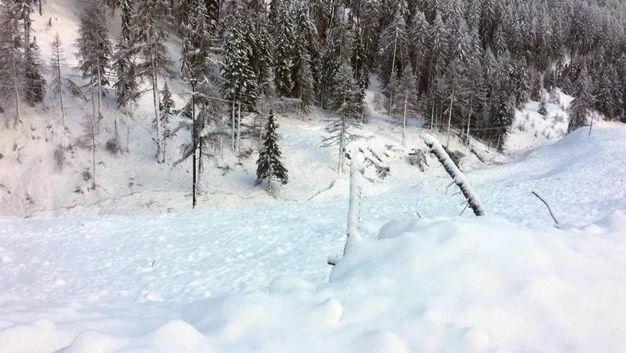 Un'immagine dei danni della  valanga che ha colpito la Vallelunga (Ansa)