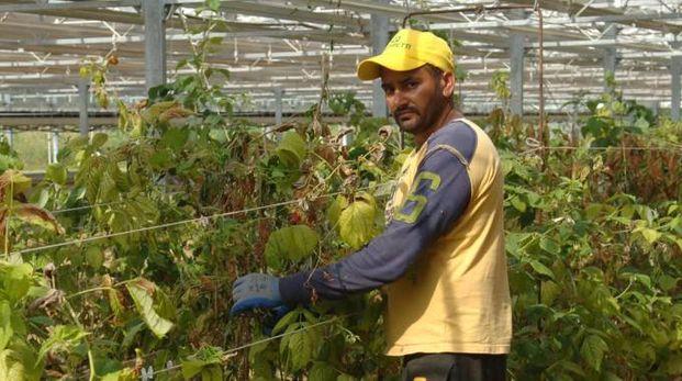 Si andrà dal recupero di nuove oasi al mercato contadino