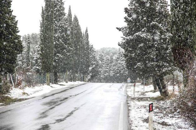 Le foto della nevicata (Tommaso Gasperini / Fotocronache Germogli)