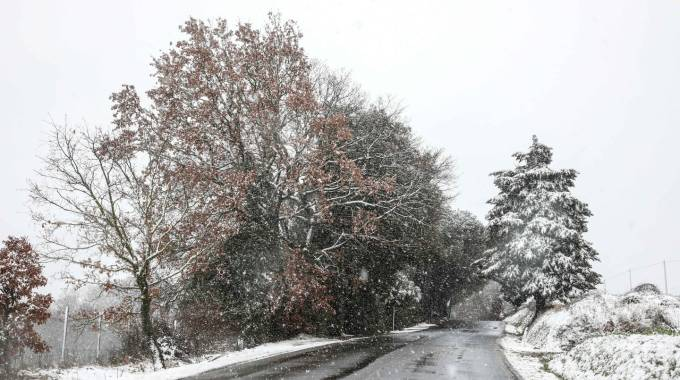 Nevicata sabato 3 febbraio a Gambassi Terme (fotocronache Germogli)
