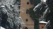 Bologna, foto di Renato Nucci