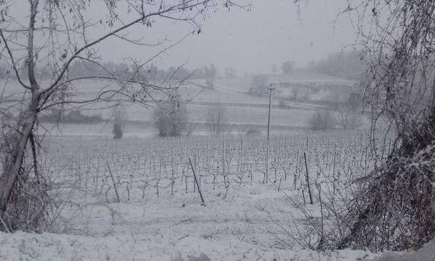 Neve sulle colline di Faenza, foto di Stefano Fabbri