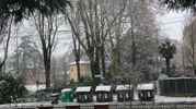 Da Simona la vista sul Parco dell'Osservanza di Imola