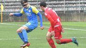Carrarese-Monza 1-0, le foto della partita (Delia)