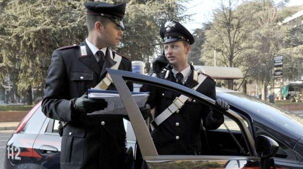 Erano stati i carabinieri del nucleo investigativo di Pisa a occuparsi dell'ultimo caso avvenuto a Migliarino