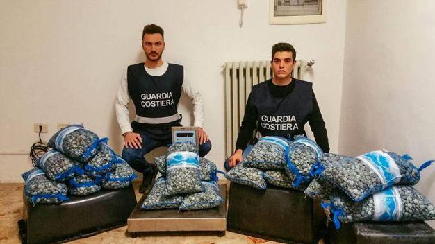 200 chili di vongole sequestrati (Foto Zeppilli)