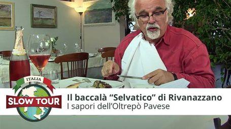 """Il Baccalà """"Selvatico"""" di Rivanazzano Terme"""