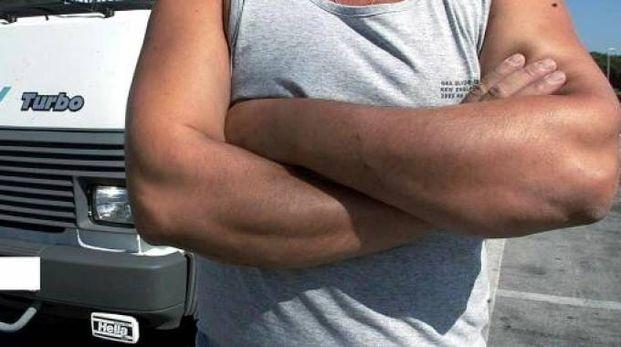 Un camionista (archivio)