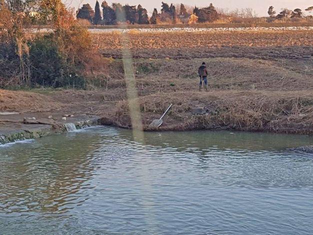 Pesca vietata alle cèe