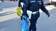 Sequestro di bombolette di schiuma (Foto Umicini)