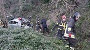 Vigili del fuoco al lavoro sull'incidente (Foto Zeppilli)