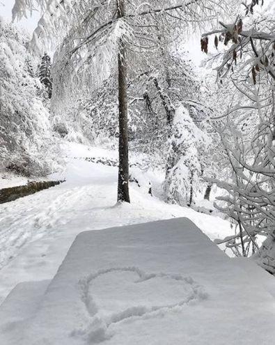 Neve in Friuli Venezia Giulia (Instagram / annaioan)
