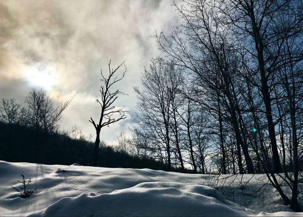 Neve sull'Italia (Twitter/ @claviggi)