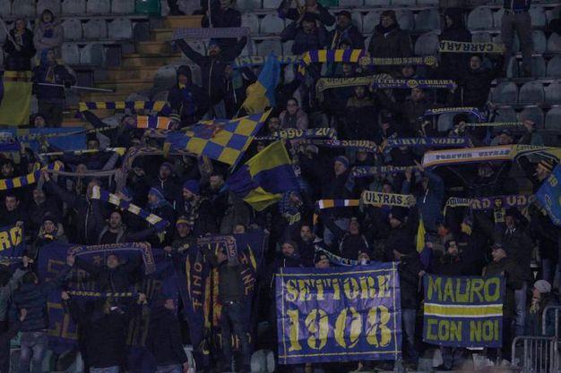 Tifosi della Carrarese (Foto Dipietro)