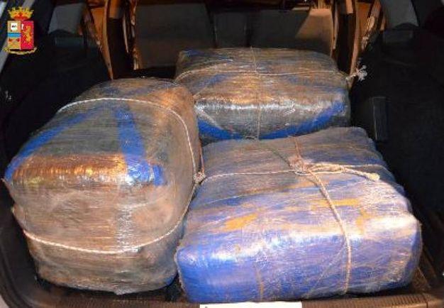 La polizia ha sequestrato complessivamente 105 chili di marijuana