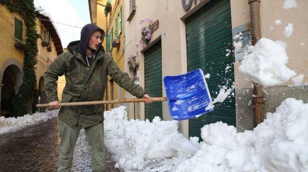 I disagi della nevicata dello scorso novembre nella zona di Loiano e Monghidoro (FotoSchicchi)