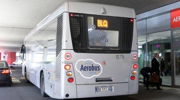 Un bus Blq in una foto d'archivio Schicchi