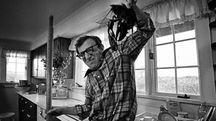 """Woody Allen alle prese con un'aragosta in """"Io e Annie"""": è una delle foto di Brian Hamill esposte nella mostra"""