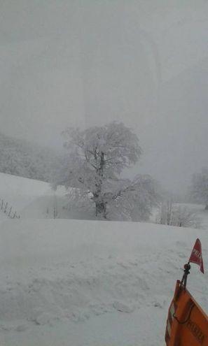 La magia della neve (foto Pisciolini)