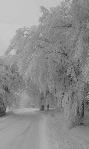Tutto bianco (foto Pisciolini)