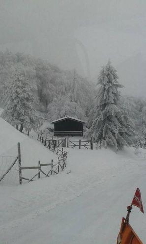 Neve e galaverna, paesaggi da cartolina (foto Pisciolini)