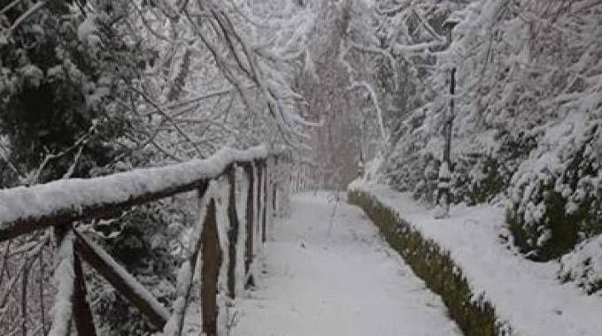 Neve nel Fermano (Foto Zeppilli)