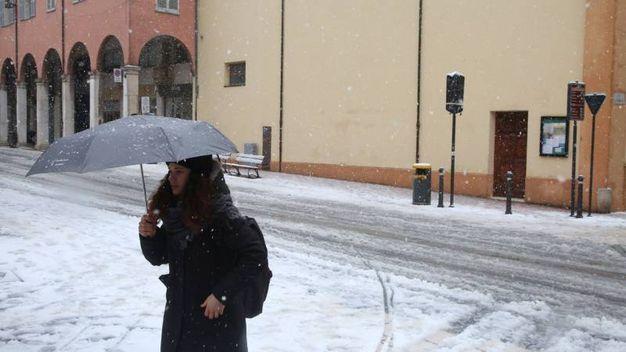 Cesena imbiancata (foto Ravaglia)