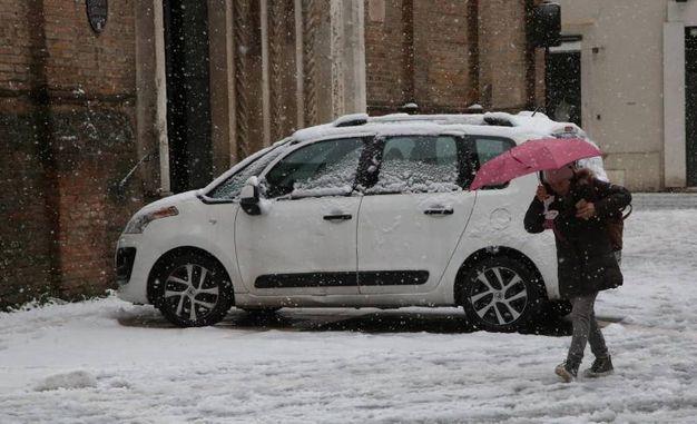 Neve a Cesena (foto Ravaglia)