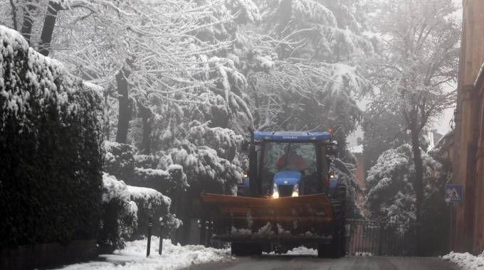 Previsioni meteo, Bologna imbiancata. Prossima settimana ondata di geli (foto Ansa)