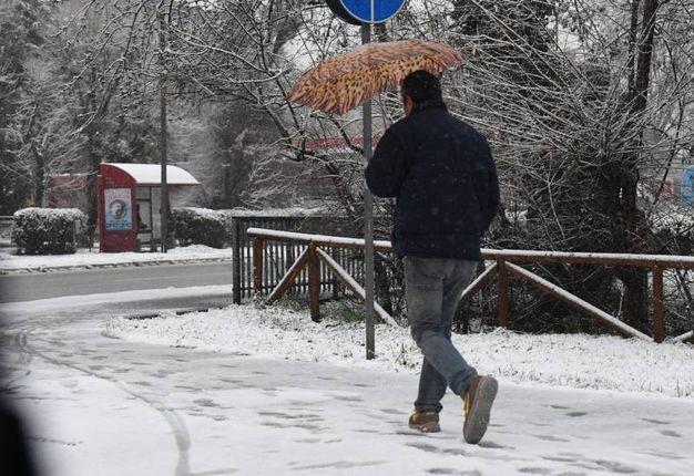 Bologna si è svegliata sotto la neve (Foto Schicchi)
