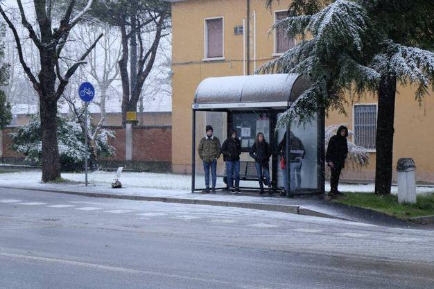 A Santa Sofia 15 i cm di neve fresca, ma a Spinello e Corniolo il manto nevoso ha raggiunto i 20 cm che si sono aggiunti alla coltre già esistente da giorni (Foto Frasca)