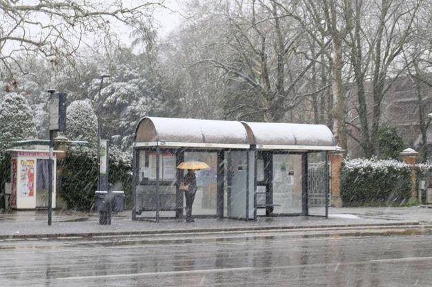 La neve ha creato problemi alla viabilità (Foto Frasca)