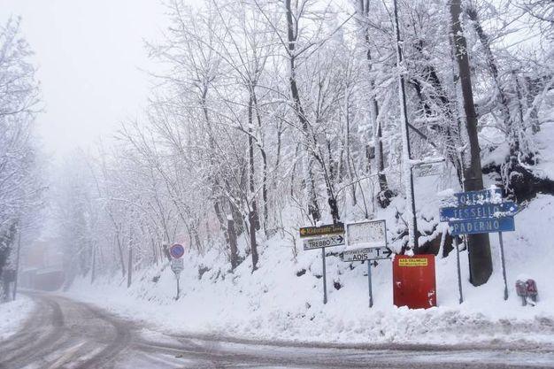 Abbondanti nevicate a Bertinoro (Foto Fantini)