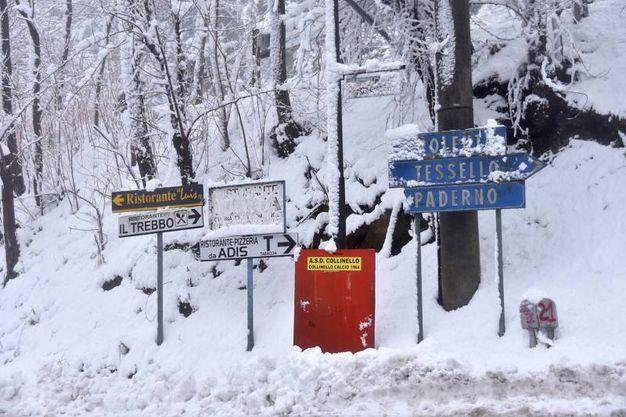 Neve copiosa a Bertinoro (Foto Fantini)